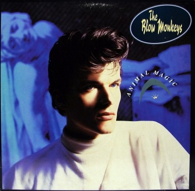 Animal Magic - The Blow Monkeys (Winyl, LP, Album, ℗ © 1986) - przód główny
