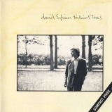 David Sylvian - Brilliant Trees